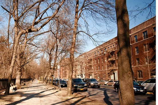 Brooklyn-rental-apartments-prospect-lefferts-gardens3