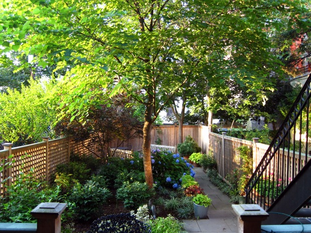 Brownstone-brooklyn-rental-apartments-backyard3