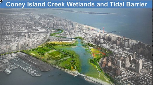 Coney Island Wetlands Could Provide Storm Protection
