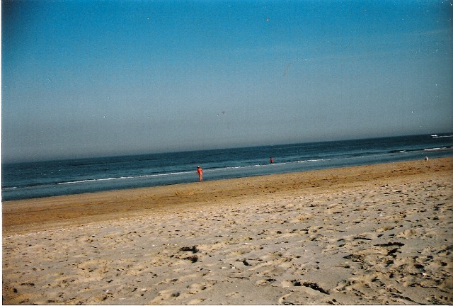 Nyc-public-beach-sandy-hook-beach-new-jersey-7